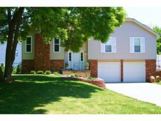 13901 S Raintree Drive  , Olathe, KS 66062 (#1915866) :: Char MacCallum Real Estate Team