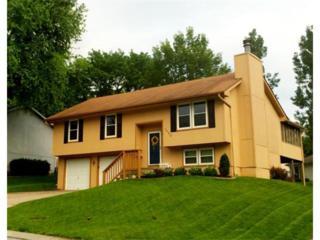 1425  Hale Avenue  , Platte City, MO 64079 (#1940088) :: Char MacCallum Real Estate Group