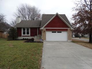 14021 S Cottonwood Drive  , Olathe, KS 66062 (#1915248) :: Char MacCallum Real Estate Team