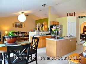 7299  County Line Rd  , Spring Hill, FL 34606 (MLS #2155158) :: The Hardy Team - RE/MAX Marketing Specialists