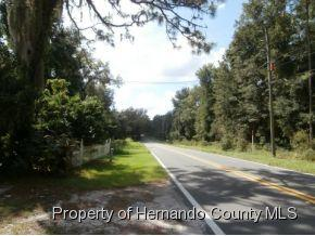 8276  Wpa Rd  , Brooksville, FL 34601 (MLS #2155529) :: The Hardy Team - RE/MAX Marketing Specialists