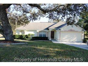 2334  Lema Dr  , Spring Hill, FL 34609 (MLS #2157707) :: The Hardy Team - RE/MAX Marketing Specialists