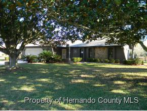 266  Waterfall Dr  , Spring Hill, FL 34608 (MLS #2158451) :: The Hardy Team - RE/MAX Marketing Specialists