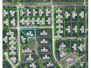 0  Persimmon Ave  , Brooksville, FL 34614 (MLS #2158491) :: The Hardy Team - RE/MAX Marketing Specialists