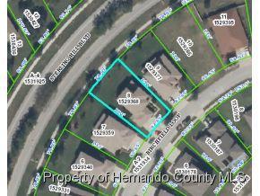 4481  Birchfield Loop  , Spring Hill, FL 34609 (MLS #2158565) :: The Hardy Team - RE/MAX Marketing Specialists