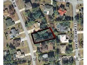 348  Killinger Ave  , Spring Hill, FL 34606 (MLS #2159494) :: The Hardy Team - RE/MAX Marketing Specialists