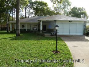 6414  Lost Tree Ln  , Spring Hill, FL 34606 (MLS #2160339) :: The Hardy Team - RE/MAX Marketing Specialists