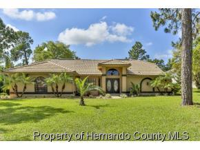 283  Minerva Pl  , Spring Hill, FL 34609 (MLS #2160712) :: The Hardy Team - RE/MAX Marketing Specialists