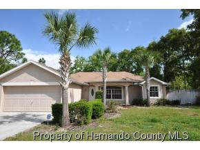 13077  Painted Bunting Ave  , Brooksville, FL 34614 (MLS #2160792) :: The Hardy Team - RE/MAX Marketing Specialists