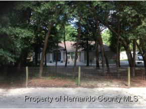 7331  Knoxville Dr  , Webster, FL 33597 (MLS #2161900) :: The Hardy Team - RE/MAX Marketing Specialists