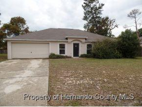 4403  Lamson Ave  , Spring Hill, FL 34608 (MLS #2156870) :: The Hardy Team - RE/MAX Marketing Specialists