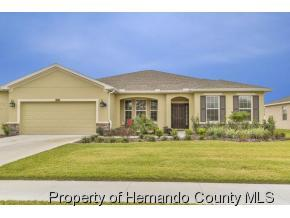 13442  Barkingside Pl  , Spring Hill, FL 34609 (MLS #2158494) :: The Hardy Team - RE/MAX Marketing Specialists
