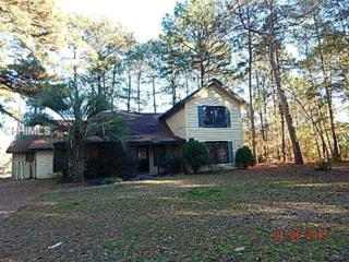 1  Lotus Ct  , Bluffton, SC 29910 (MLS #335013) :: Collins Group Realty
