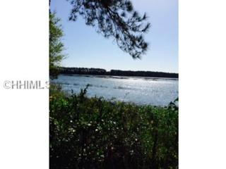 14  Carrier Blf  , Bluffton, SC 29909 (MLS #336578) :: Collins Group Realty