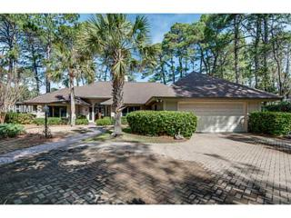 6  Cattail Ct  , Hilton Head Island, SC 29926 (MLS #335856) :: Collins Group Realty