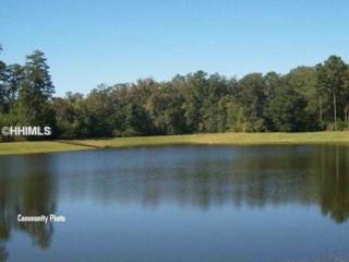 125  Heyward Point Rd  , Okatie, SC 29909 (MLS #322160) :: Collins Group Realty