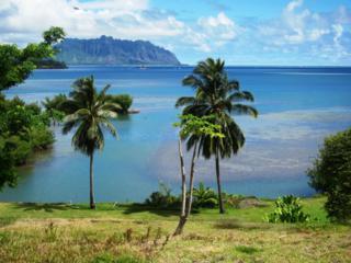 46-123  Lilipuna Road  , Kaneohe, HI 96744 (MLS #201406651) :: Elite Pacific Properties