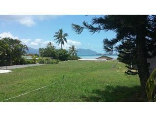 44-295  Kaneohe Bay Drive  2, Kaneohe, HI 96744 (MLS #201411460) :: Elite Pacific Properties