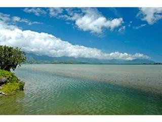 44-295  Kaneohe Bay Drive  4, Kaneohe, HI 96744 (MLS #201411469) :: Elite Pacific Properties