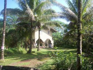 15-2065  4th Avenue  , Keaau, HI 96749 (MLS #201416415) :: Elite Pacific Properties