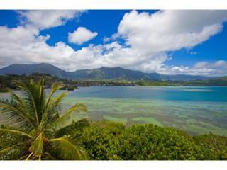 46-047  Lilipuna Road  , Kaneohe, HI 96744 (MLS #201416623) :: Elite Pacific Properties