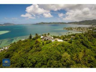 45-001  Lilipuna Road  A, Kaneohe, HI 96744 (MLS #201416816) :: Elite Pacific Properties