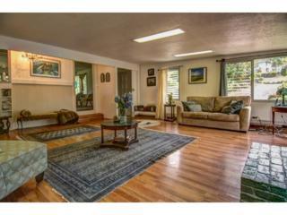 60  Kapaa Street  , Hilo, HI 96720 (MLS #201418390) :: Elite Pacific Properties