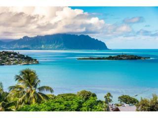 45-206  Kokokahi Place  , Kaneohe, HI 96744 (MLS #201418923) :: Elite Pacific Properties