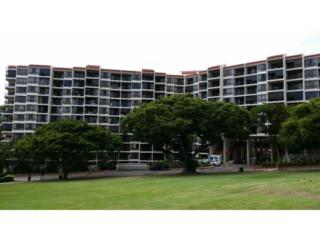 3138  Waialae Avenue  213, Honolulu, HI 96816 (MLS #201419177) :: Elite Pacific Properties