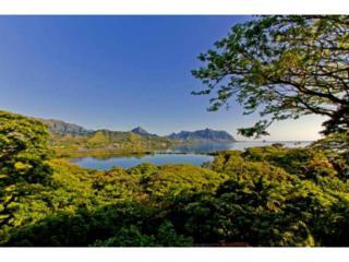 47-465  Lulani Street  , Kaneohe, HI 96744 (MLS #201419210) :: Elite Pacific Properties