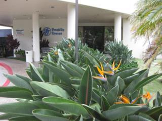 990  Ala Nanala Street  8D, Honolulu, HI 96818 (MLS #201419486) :: Team Lally