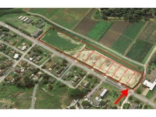 56-420  Kamehameha Highway  1, Kahuku, HI 96731 (MLS #201419528) :: Team Lally