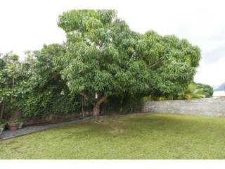 729  Pahumele Place  , Kailua, HI 96734 (MLS #201420809) :: Elite Pacific Properties
