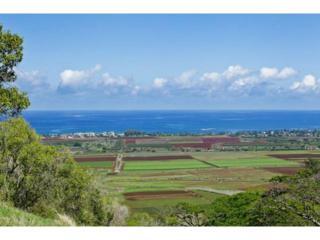 67-290  Farrington Highway  3, Waialua, HI 96791 (MLS #201423239) :: Elite Pacific Properties