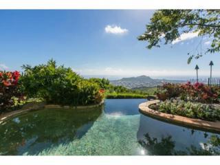 2149  Aha Niu Place  , Honolulu, HI 96821 (MLS #201501224) :: Elite Pacific Properties