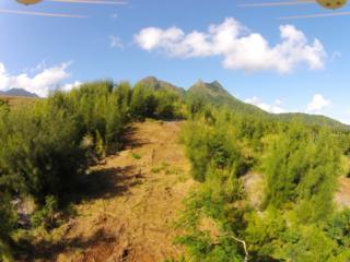 240  Kalanianaole Highway  Lot 13, Kailua, HI 96734 (MLS #201501370) :: Team Lally