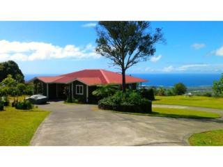 73-1383  Kinoulu Street  , Kailua Kona, HI 96740 (MLS #201501512) :: Team Lally