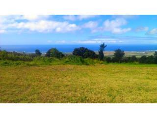 73-1383  Kinoulu Street  , Kailua Kona, HI 96740 (MLS #201501519) :: Team Lally
