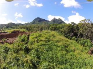 240  Kalanianaole Highway  Lot 19, Kailua, HI 96734 (MLS #201501577) :: Team Lally
