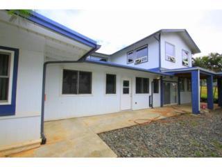 45-203B  Lilipuna Road  , Kaneohe, HI 96744 (MLS #201507559) :: Elite Pacific Properties