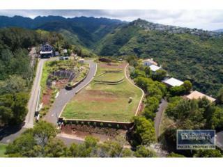 4967C  Maunalani Circle  , Honolulu, HI 96816 (MLS #201508463) :: Elite Pacific Properties
