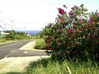 12-217  Mapuana Avenue  , Pahoa, HI 96778 (MLS #201508769) :: Elite Pacific Properties