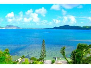 45-017  Lilipuna Road  , Kaneohe, HI 96744 (MLS #201412967) :: Elite Pacific Properties