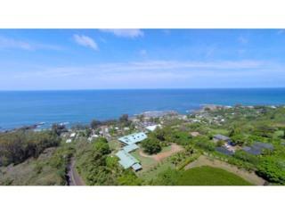 59-208  Alapio Road  , Haleiwa, HI 96712 (MLS #201419230) :: Elite Pacific Properties