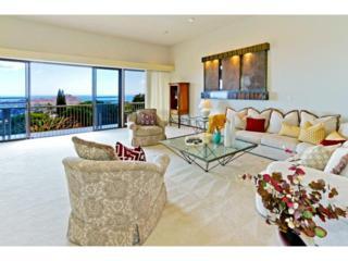 4557  Sierra Drive  , Honolulu, HI 96816 (MLS #201504768) :: Elite Pacific Properties