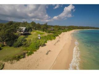 56-155A  Kamehameha Highway  , Kahuku, HI 96731 (MLS #201416634) :: Elite Pacific Properties
