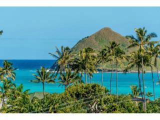 1059  Aalapapa Drive  , Kailua, HI 96734 (MLS #201500669) :: Elite Pacific Properties