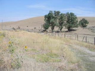 1806  Thousand Springs Road  , Weiser, ID 83672 (MLS #98547826) :: Core Group Realty