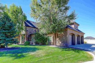 1967 N Spring Hollow Pl.  , Star, ID 83669 (MLS #98566746) :: Agents With a Smile