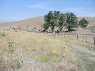 1806  Thousand Springs Road  , Weiser, ID 83672 (MLS #98566892) :: Core Group Realty